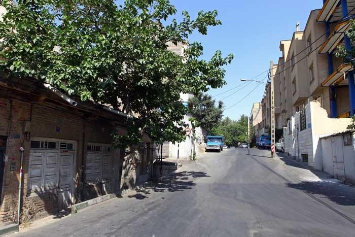 کاشانک، روستایی سرسبز