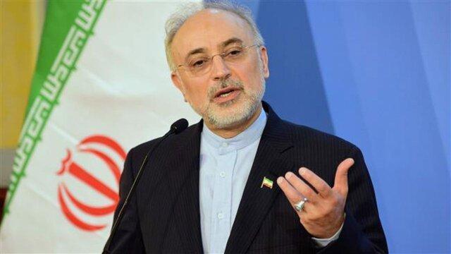 صالحی: با قدرت به حرکت برای پیشبرد اهداف هسته ای ادامه می دهیم