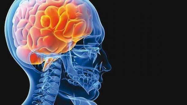 با این خوردنی های خوشمزه و طبیعی از سکته مغزی فاصله بگیرید